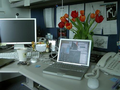apple kantoor meriko