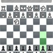 NetChess schaken