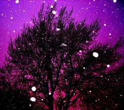 purplesnow