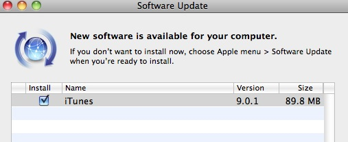 Apple iTunes 9.0.1 Update