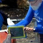 Dolfijn Merlin en de iPad