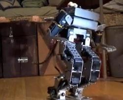 hikari robot