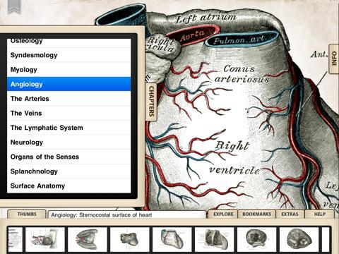 grays anatomy ipad