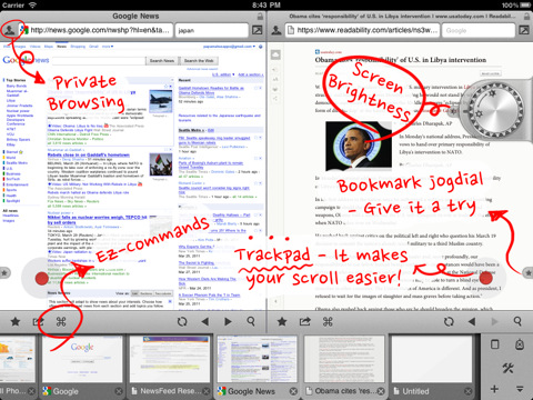 iPad Maven Web Browser twee pagina's