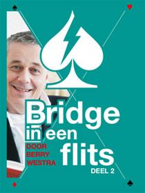bridge-in-een-flits