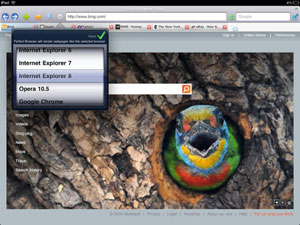 perfect-web-browser