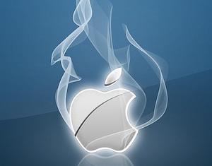 apple rook