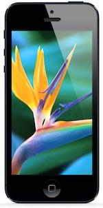 iphone scherm display
