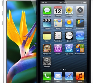 iphone 5 bloem