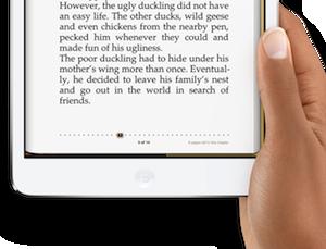 iPad mini schermrand