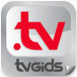 iPad mini TVGiDS.tv