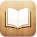 iPad mini iBooks