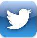 iPad mini Twitter