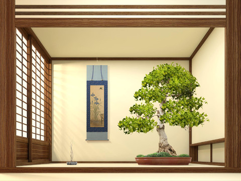 bonsai master studio