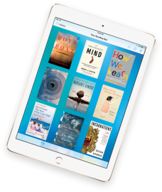 Bluefire Reader voor de iPad.
