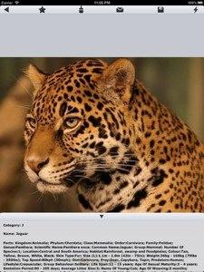 World of Zoo: complete dierentuin op je iPhone, tijdelijk gratis