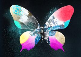 Eurovision Song Contest iOS