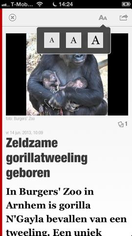 De Telegraaf nieuwsbericht lettergrootte