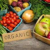Beste apps voor bewust eten en specifieke eetwensen
