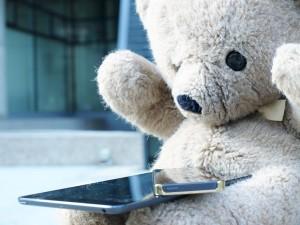 teddy guardian