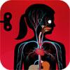 het-menselijk-lichaam-icoon