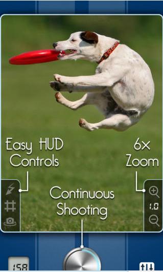 Snappycam hond
