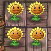 Plants vs Zombies 2 zon