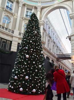 kerstboom-den-haag-charlie-victor-1