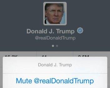 Twitter iOS mute zoom
