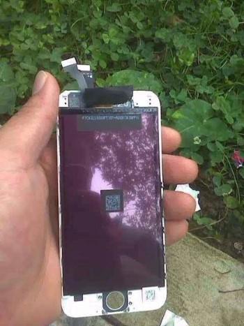 iPhone 6L (Custom)