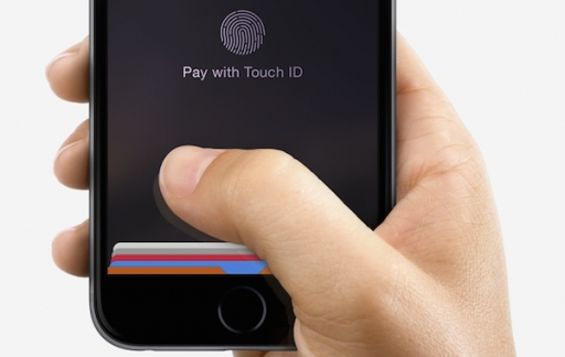 apple pay hand