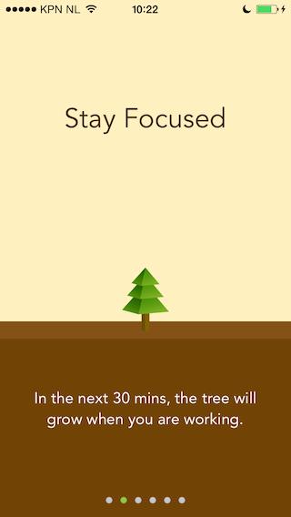 Forest half uur voor een boom