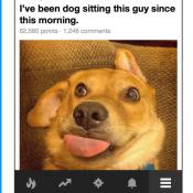 9GAG hond en lachen man