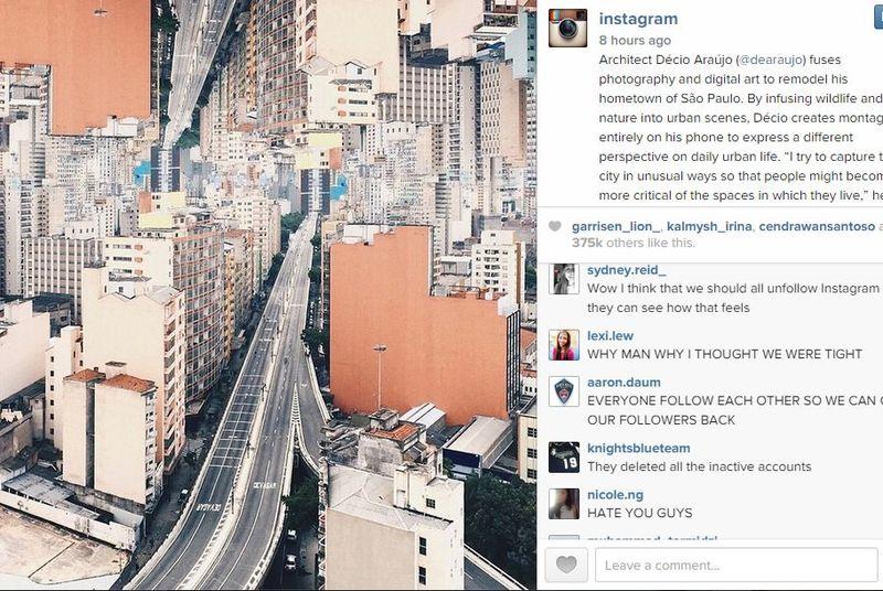 instagram purge