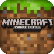 minecraft-icoon-groot