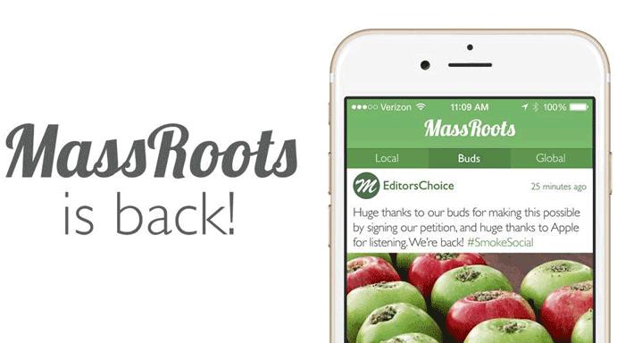 massroots-back