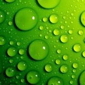 Waarom iedereen een hekel heeft aan groene bubbels (opinie)