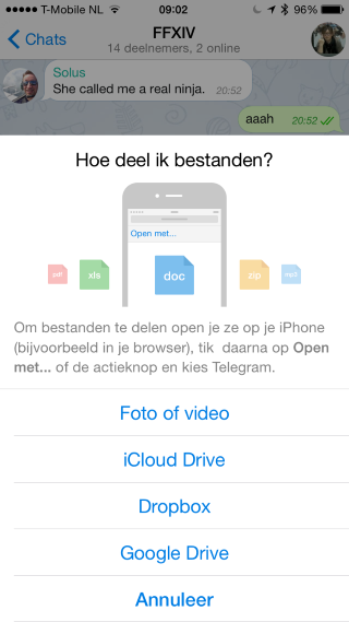 Telegram bestandsfunctie (Custom)