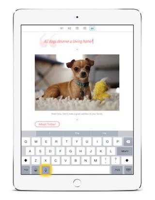 Adobe Slate screenshot app