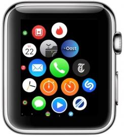 regionale-omroepen-apple-watch-app-2
