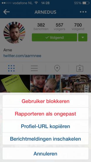 berichtmeldingen instagram