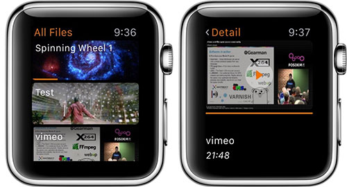 vlc-apple-watch