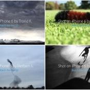 Nederlandse vogelzwerm in eregalerij 'Shot on iPhone 6'