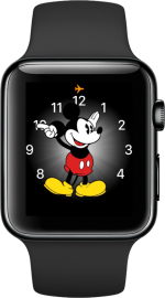 Apple Watch status iconen