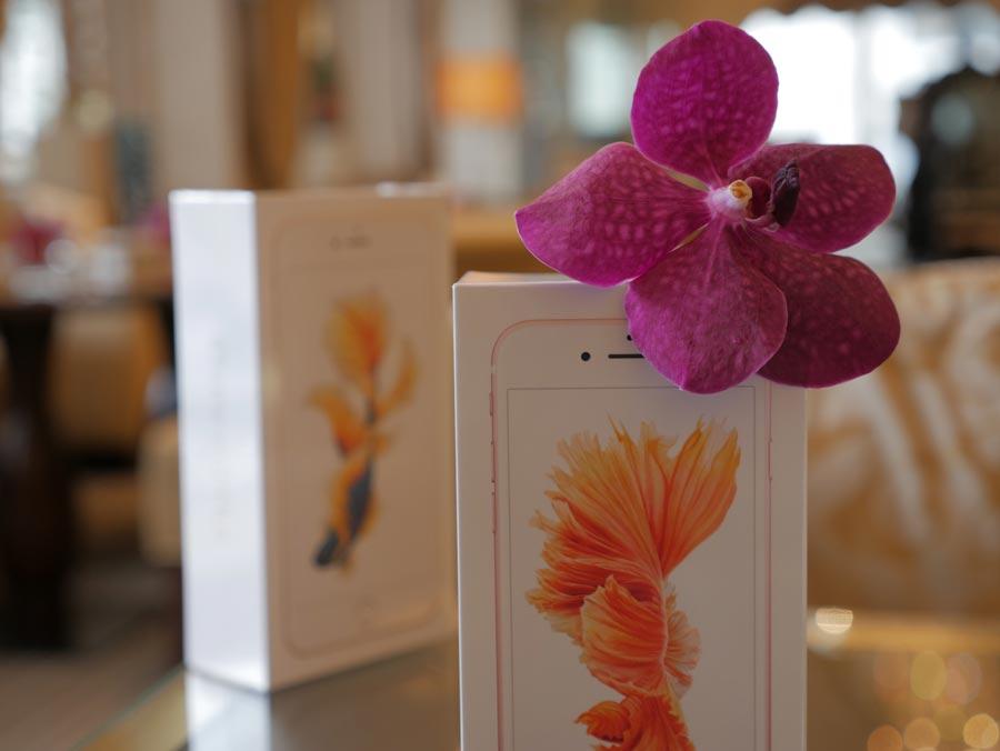 iPhone 6s doosjes met orchidee