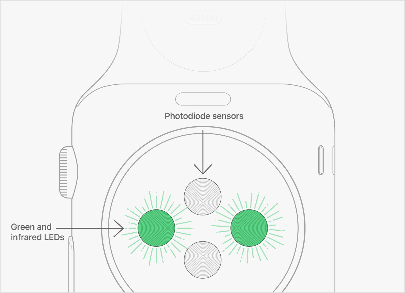 Apple Watch hartslagmeter