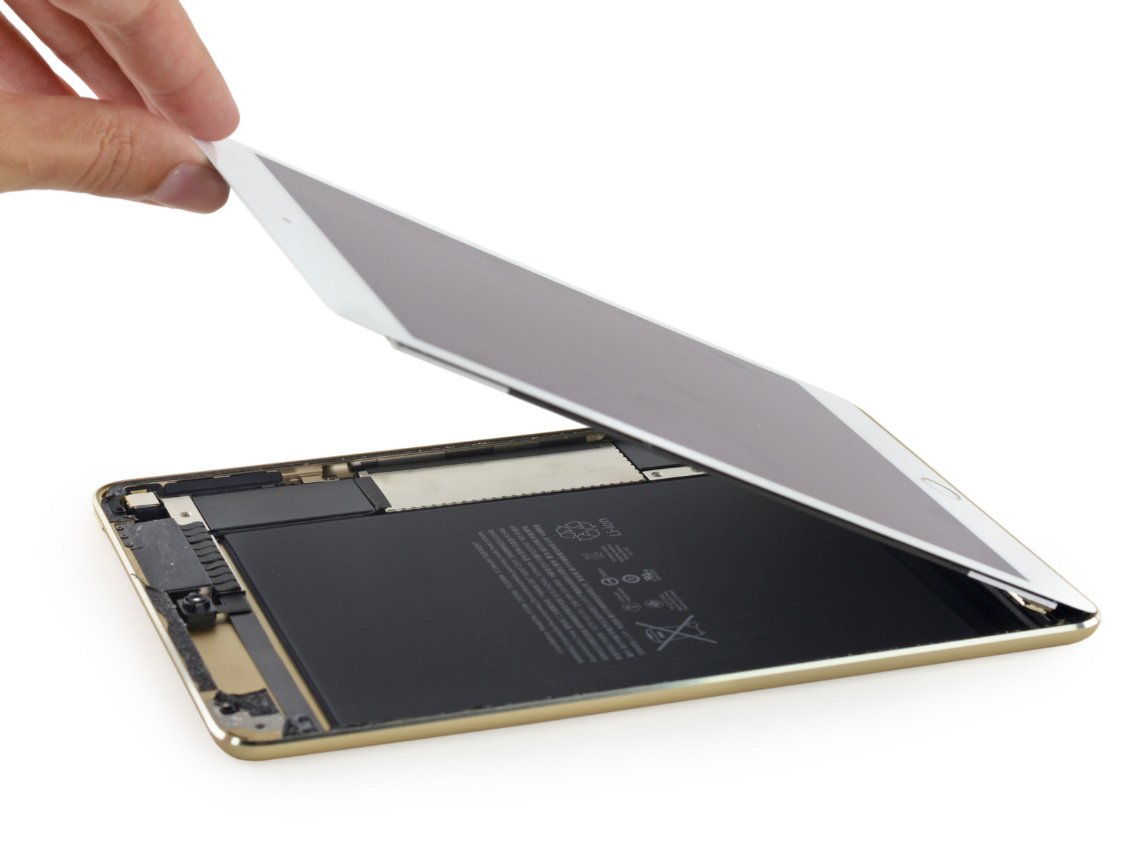 iFixit-iPad-Teardown