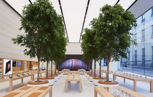 Apple Store Brussel, kijkje in de winkel met bomen