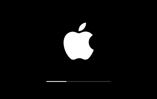 Apple-logo opstarten