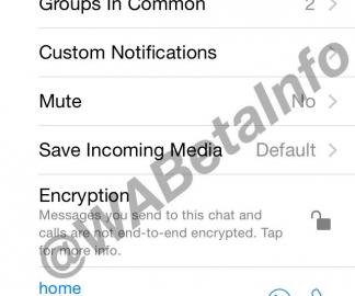 Encryptie op WhatsApp uitzetten.